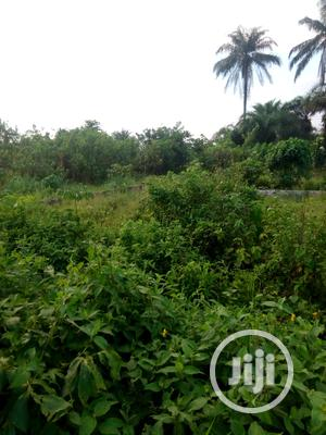 Two and Half Plots of at Rupkokwu | Land & Plots For Sale for sale in Rivers State, Port-Harcourt