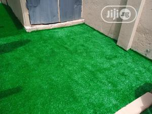 35mm Natural Grass Decoration Of Compound In Lagos   Landscaping & Gardening Services for sale in Lagos State, Ikeja