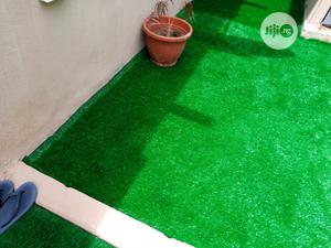 Professional Artificial/ Natural Grass Installers In Nigeria   Landscaping & Gardening Services for sale in Lagos State, Ikeja