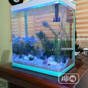 Exotic Aquarium | Fish for sale in Lagos State, Ipaja