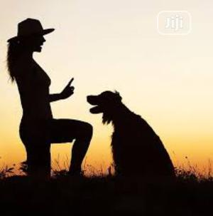 Dog Training   Pet Services for sale in Abuja (FCT) State, Jabi