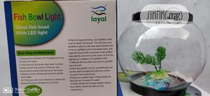 LED Fish Bowl   Fish for sale in Lagos State, Ikeja