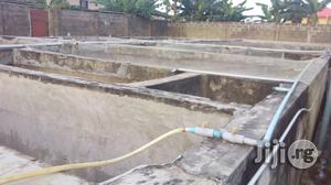 Commercial Fish Farm on 2 Plots at Ijegun for Sale. | Commercial Property For Sale for sale in Lagos State, Alimosho