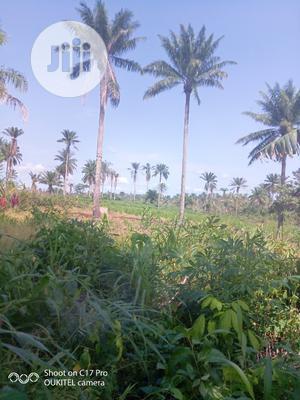 Opposite Ilaji Stadium , Cancel Junction Akanran Road Ibadan   Land & Plots For Sale for sale in Oyo State, Ona-Ara
