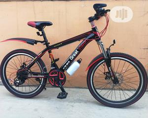 Adult Bicycle | Toys for sale in Lagos State, Ikeja