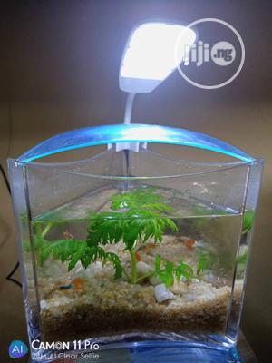 Mini Triangle Aquarium | Fish for sale in Lagos State, Ipaja