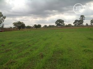 A Relatively Flat Piece of Land at Damishi, Kaduna State | Land & Plots For Sale for sale in Kaduna State, Chikun