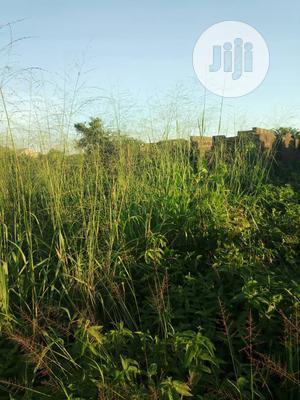 Full Plot of Land at Alishiba for Sale   Land & Plots For Sale for sale in Ogun State, Ado-Odo/Ota