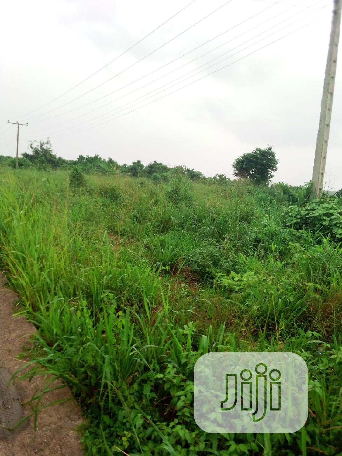 This Lands Is Dangote Refinery Roads Ibeju Lekki | Land & Plots For Sale for sale in Ibeju, Lagos State, Nigeria