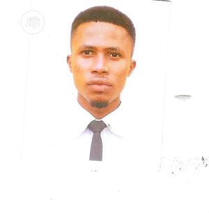 Web Developer | Computing & IT CVs for sale in Lagos State, Surulere