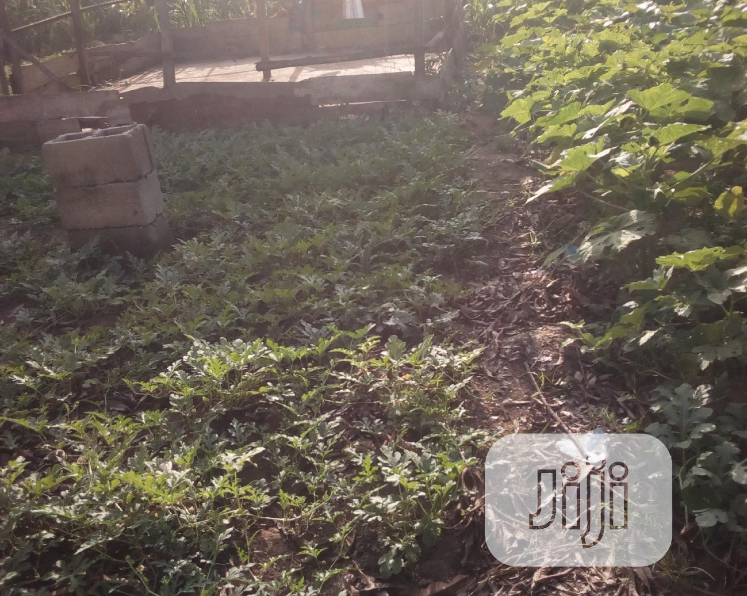 Certificate Of Occupancy | Land & Plots For Sale for sale in Gwagwalada, Abuja (FCT) State, Nigeria