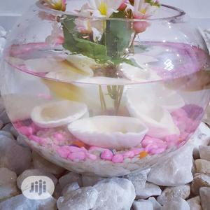 Fish Bowl For Sale   Fish for sale in Lagos State, Lekki