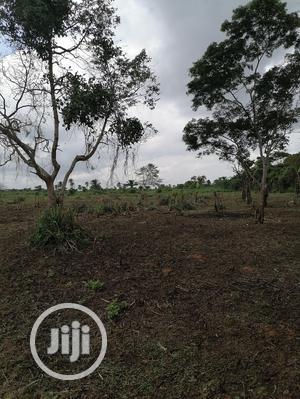 5 Acre Land For Lease On Sagamu Abeokuta Expressway | Land & Plots for Rent for sale in Ogun State, Obafemi-Owode