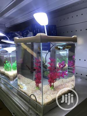 Mini Aquarium | Fish for sale in Lagos State