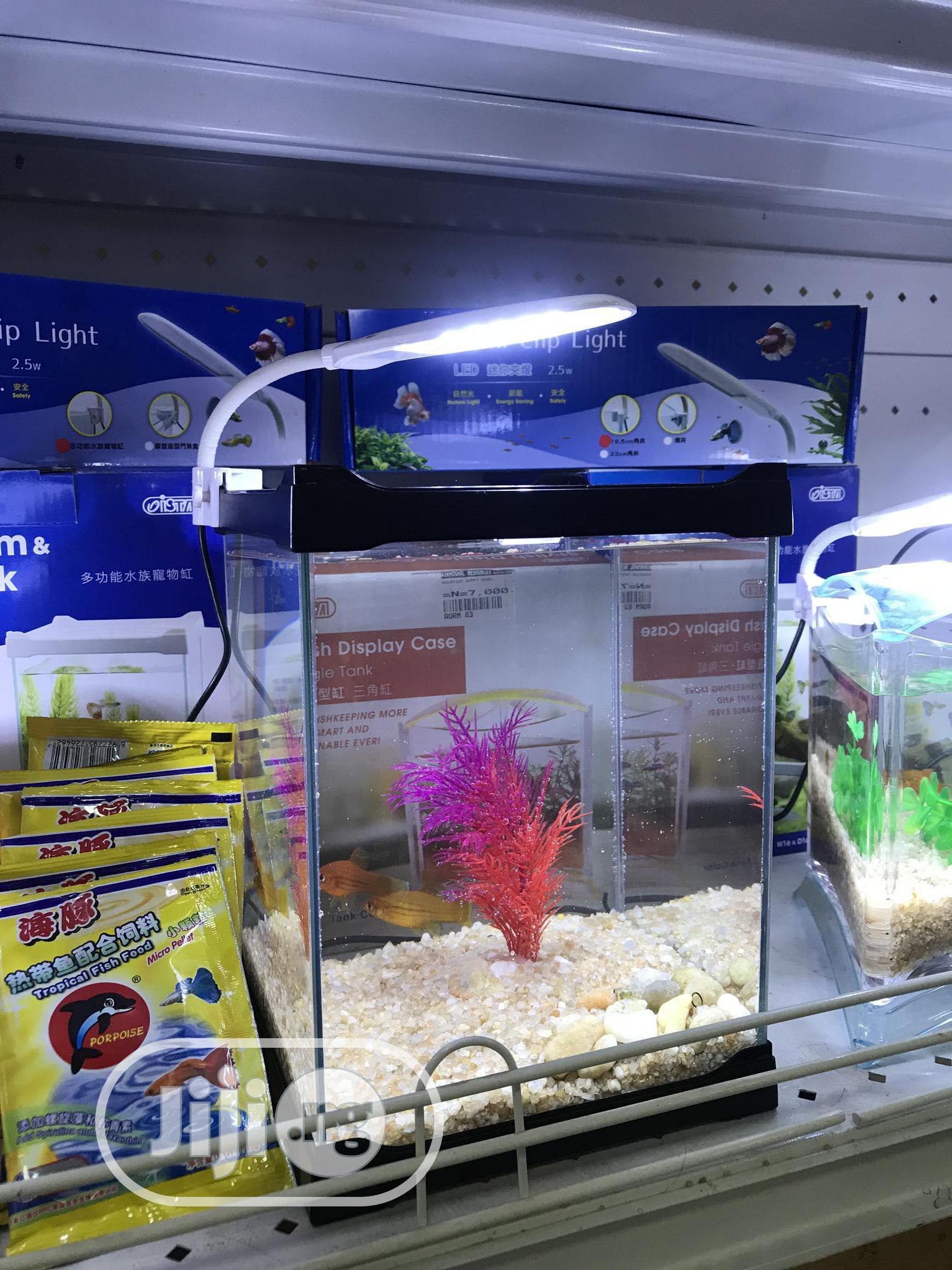 Mini Aquarium   Fish for sale in Lagos State, Nigeria