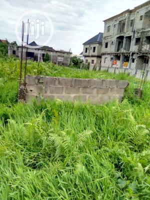 Half PLOT of LAND at Ago Palace for Sale   Land & Plots For Sale for sale in Lagos State, Amuwo-Odofin