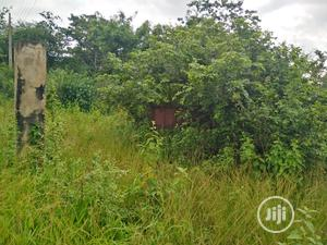 100ft by 100ft Land for Sale   Land & Plots For Sale for sale in Delta State, Uvwie