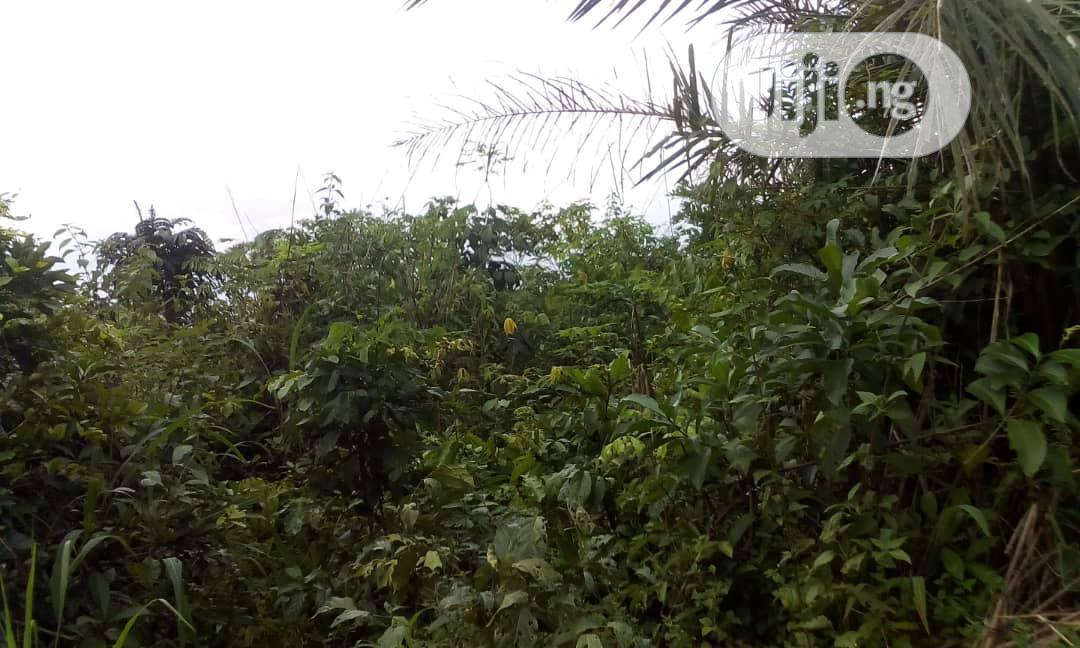 Multipurpose 2ha Of Land For Sale High Brow Area Of Abuja