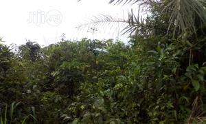 Multipurpose 2ha Of Land For Sale High Brow Area Of Abuja | Land & Plots For Sale for sale in Abuja (FCT) State, Kubwa
