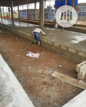 POULTRY Setup Consultants and Builders | Building & Trades Services for sale in Lagos State, Magodo