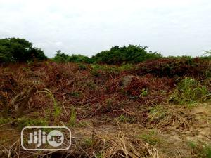 Half Plot of Land for Sale at Ibeshe   Land & Plots For Sale for sale in Lagos State, Ikorodu