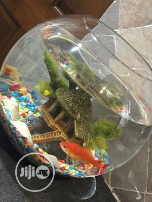 Fish Bowl Kit   Pet's Accessories for sale in Lagos State, Ikoyi