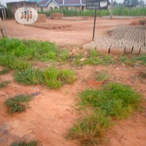 Land for Sell at Mgbakwu Close to Anambra State Polyteachic   Land & Plots For Sale for sale in Anambra State, Awka