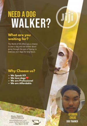 Dog Trainer And Walker   Pet Services for sale in Abuja (FCT) State, Gwarinpa