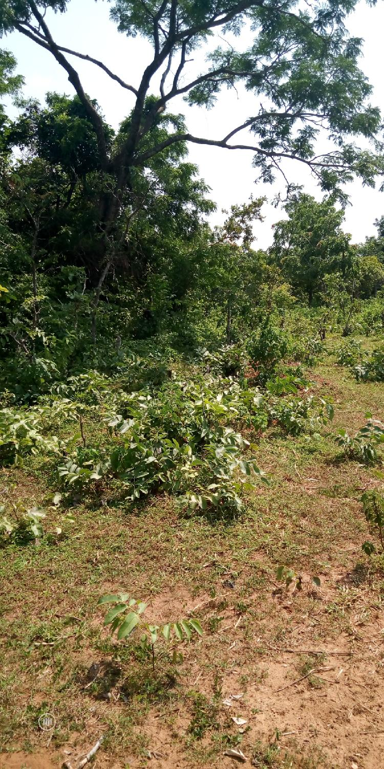 Plots Of Land For Sale | Land & Plots For Sale for sale in Ilorin West, Kwara State, Nigeria
