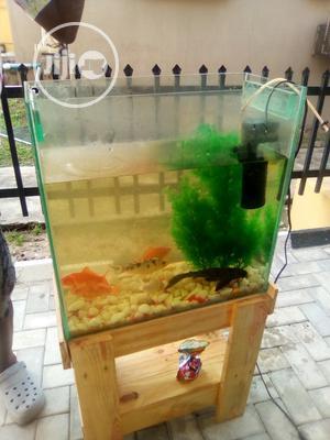 Mini Aquarium | Fish for sale in Lagos State, Surulere