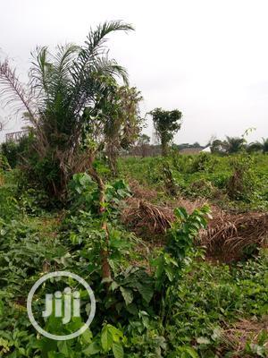 Plots of Land for Sale at Hallelujah Estate.   Land & Plots For Sale for sale in Osun State, Osogbo