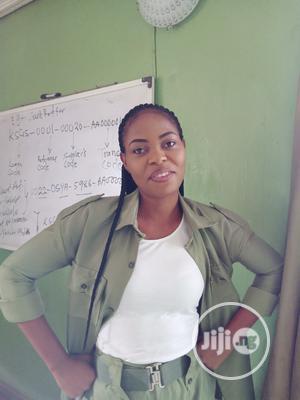 Offline Field Sales Agent | Sales & Telemarketing CVs for sale in Oyo State, Oluyole