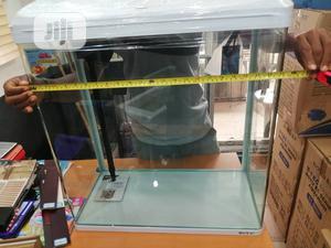 Fish Aquarium Tank | Fish for sale in Lagos State, Surulere