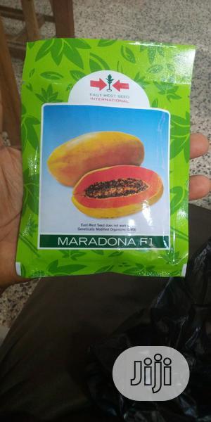 Maradonna Dwarf Pawpaw Seeds | Feeds, Supplements & Seeds for sale in Oyo State, Ibadan