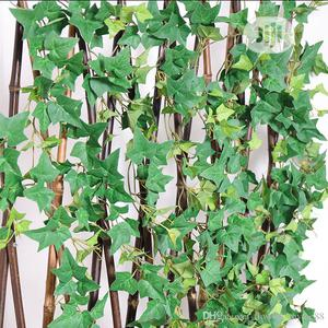 Decorate Fence With Creeping Wall Plants | Garden for sale in Lagos State, Ikeja
