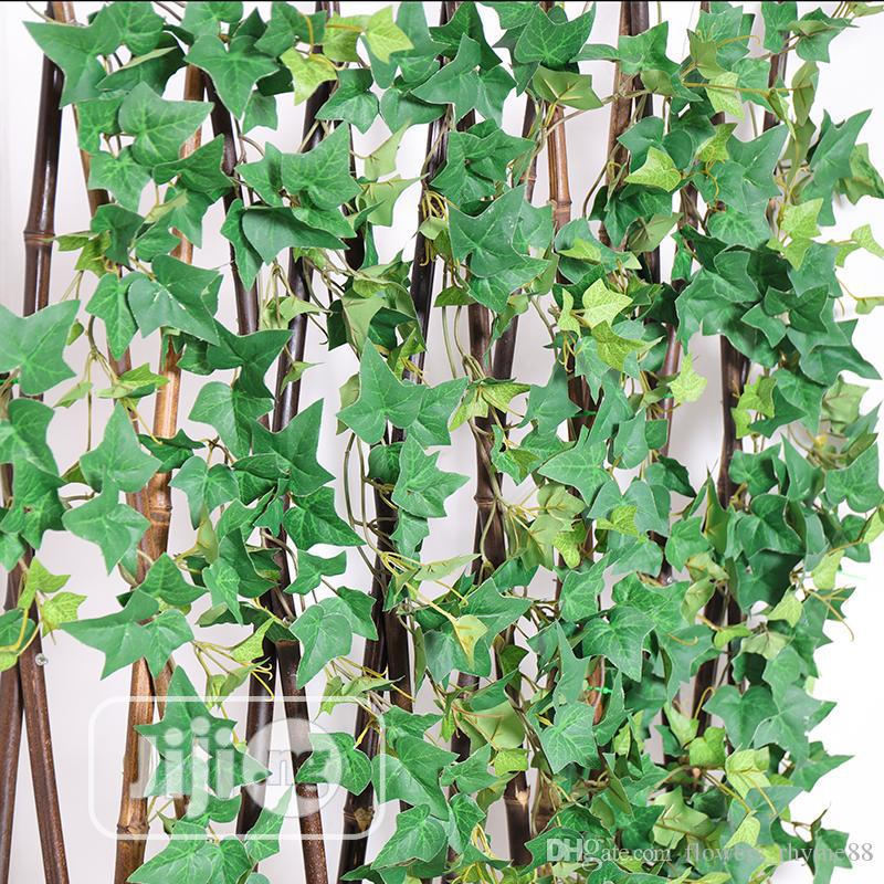 Decorate Fence With Creeping Wall Plants