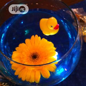 Fish Bowl Kit With Beautiful Toys   Pet's Accessories for sale in Lagos State, Surulere