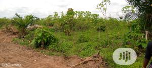 A Plot of Land Measuring 100/100ft for Sale   Land & Plots For Sale for sale in Edo State, Benin City