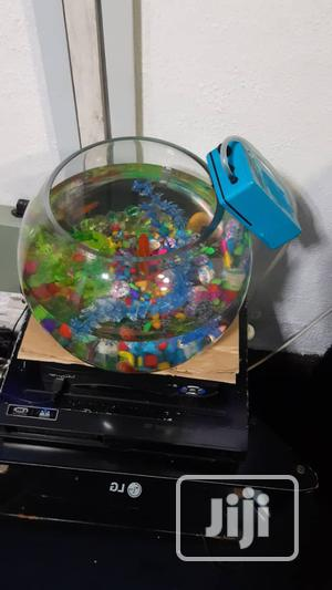 Bowl Kit For Your Aquarium Fish | Fish for sale in Lagos State, Surulere