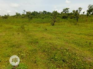 10 Hectares Farm Land for Rent   Land & Plots for Rent for sale in Nasarawa State, Keffi