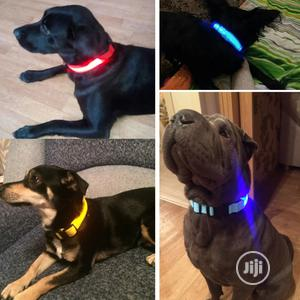 Nylon LED Glowing Collar   Pet's Accessories for sale in Abuja (FCT) State, Dutse-Alhaji