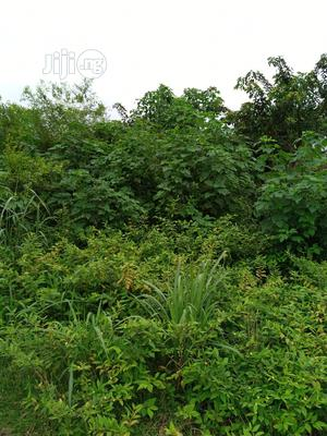 25, Acreas Of Lands Good Farming, Company, Factory, E.T.C | Land & Plots For Sale for sale in Oyo State, Ibadan