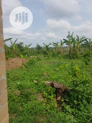 A Plot Of Land With Register Survey | Land & Plots For Sale for sale in Oyo State, Ibadan