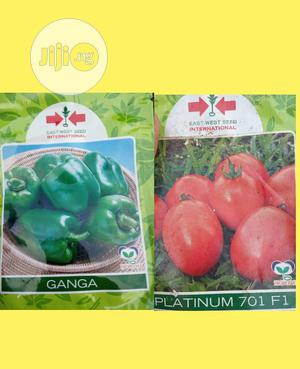 Hybrid Bell Pepper And Tomatoes Seeds And Seedlings | Meals & Drinks for sale in Lagos State, Ojodu
