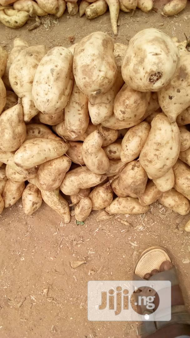 Archive: Basket of Sweet Potatoes in Abuja
