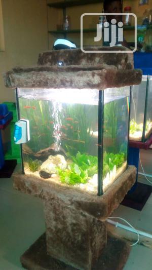 Standing Glass Aquarium | Fish for sale in Lagos State, Ikeja