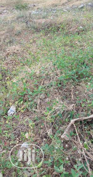 2900sqm Land For Lease @ Off Adeola Odekun Victoria Island   Land & Plots for Rent for sale in Lagos State, Victoria Island