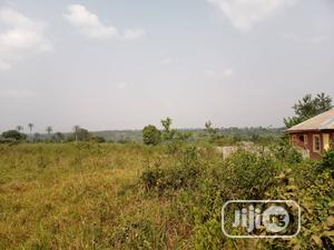 Virgin Land for Sale   Land & Plots For Sale for sale in Ogun State, Ado-Odo/Ota