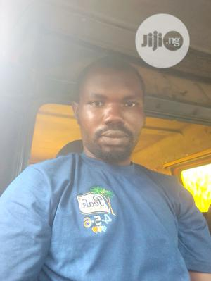 Driver CV   Other CVs for sale in Ogun State, Ifo