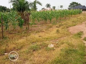A Open Space Land In A Good Location In Ososgbo   Land & Plots For Sale for sale in Osun State, Osogbo